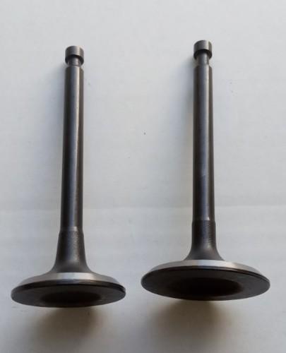 Клапаны для двигателя 168F набор 2ед (впускной, выпускной)